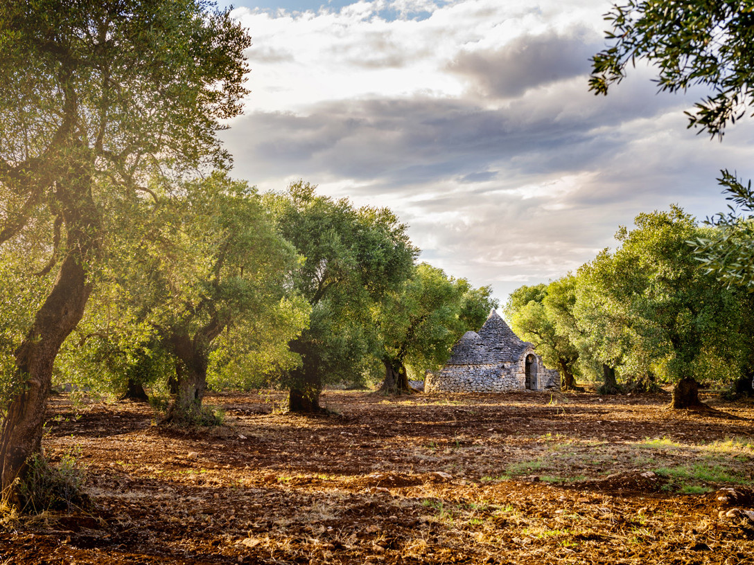 Hidden treasures of Apulia | Expert Travel Team